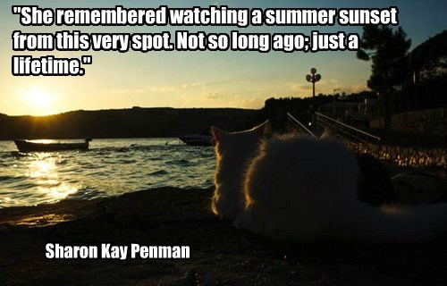 """She remembered watching a summer sunset from this very spot. Not so long ago; just a lifetime."""