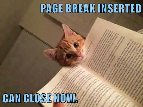 PAGE BREAK INSERTED  CAN CLOSE NOW.