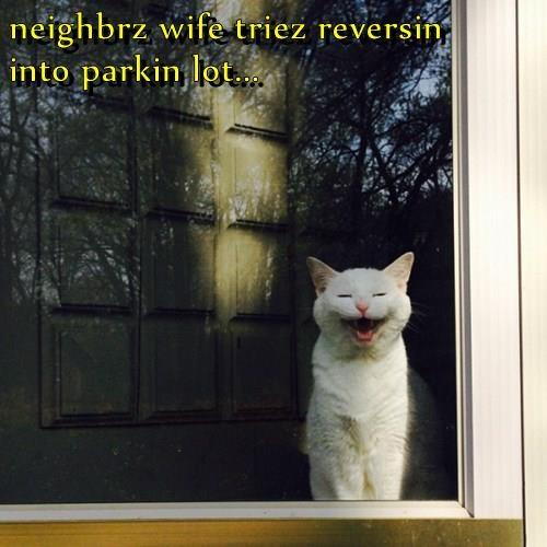 neighbrz wife triez reversin     into parkin lot...