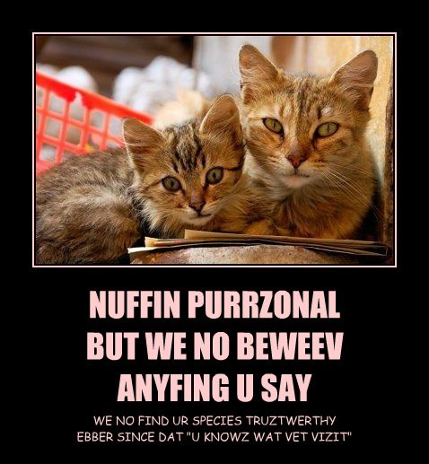 NUFFIN PURRZONAL BUT WE NO BEWEEV ANYFING U SAY