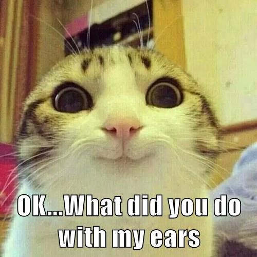 OK...What did you do with my ears