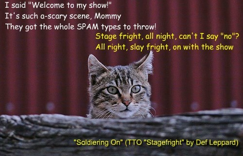 """""""Soldiering On"""" (TTO """"Stagefright"""" by Def Leppard)"""