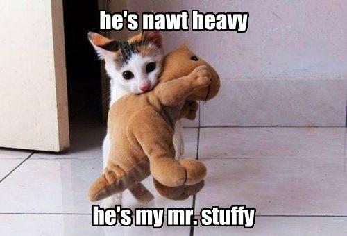 he's nawt heavy       he's my mr. stuffy