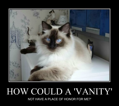HOW COULD A 'VANITY'