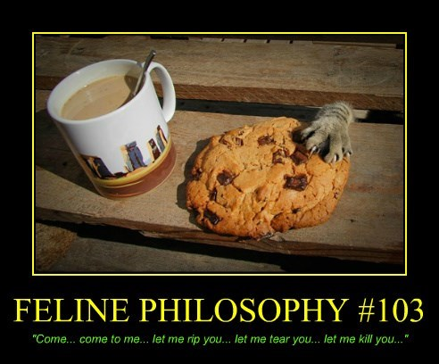 FELINE PHILOSOPHY #103