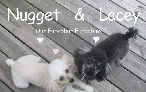 Our Precious Furbabies 5/18/2015