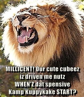 MILLICENT! Our cute cubeez                     iz driven me nutz                                      WHEN'Z dat spensive                                                        Kamp Kuppykake START?