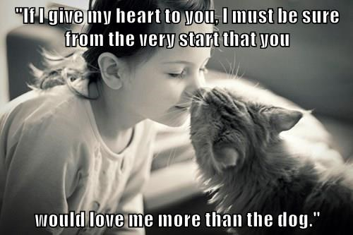 """""""If I give my heart to you, I must be sure from the very start that you  would love me more than the dog."""""""