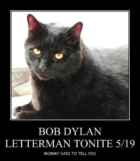 BOB DYLAN  LETTERMAN TONITE 5/19