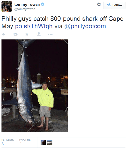 No Really, the Fish Was THIS BIG. Also, it Was an 820-Pound Shark.