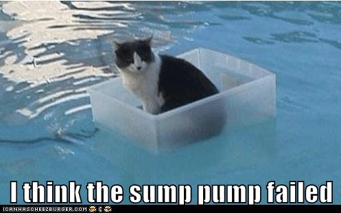 I think the sump pump failed
