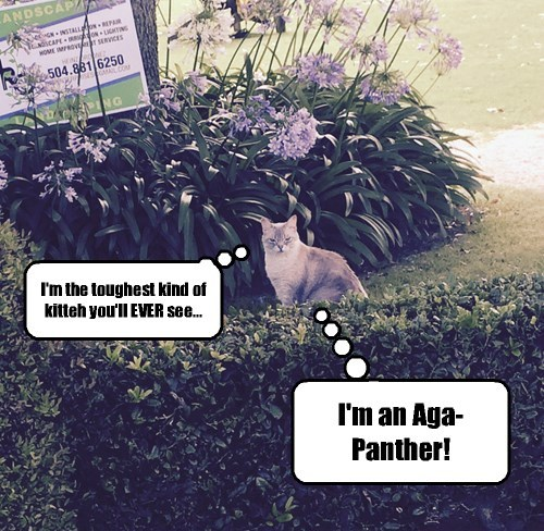 Only horticulturists will get this joke.