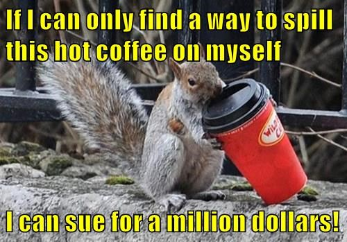 If I can only find a way to spill this hot coffee on myself  I can sue for a million dollars!