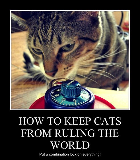 HOW TO KEEP CATS FROM RULING THE WORLD