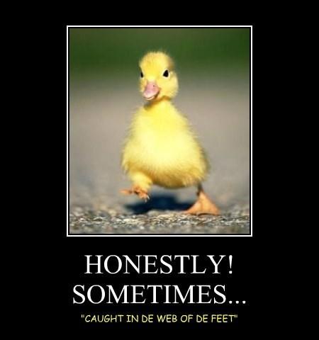 HONESTLY! SOMETIMES...