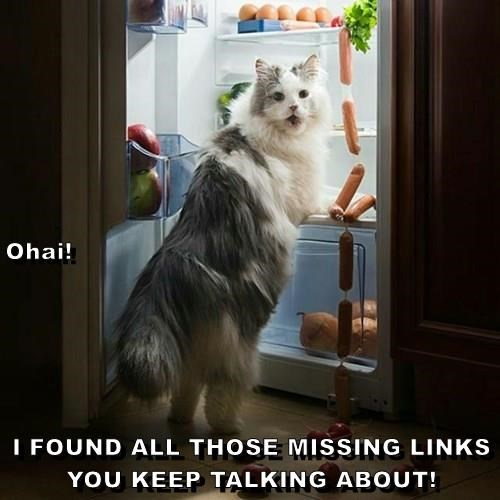 Ohai! I FOUND ALL THOSE MISSING LINKS YOU KEEP TALKING ABOUT!