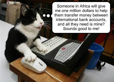 Don't do it kitty! It's a scam!