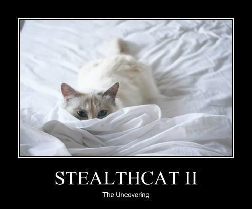 STEALTHCAT II