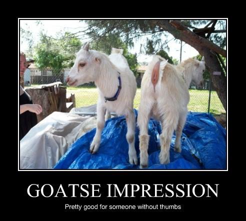 GOATSE IMPRESSION