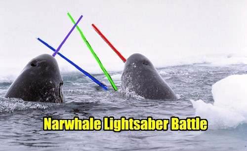 narwhals,lightsabers