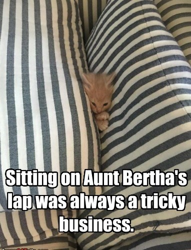 Sitting on Aunt Bertha's lap was always a tricky business.