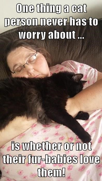 One thing a cat person never has to worry about ...  is whether or not their fur-babies love them!