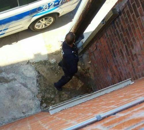 funny-fail-pic-irony-cop-public-pee