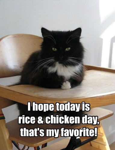 I hope today is  rice & chicken day, that's my favorite!