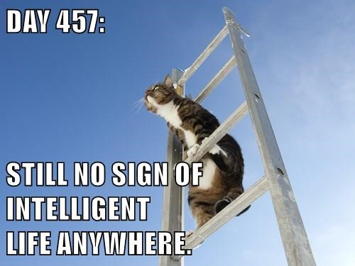 DAY 457:  STILL NO SIGN OF INTELLIGENT                                                 LIFE ANYWHERE.
