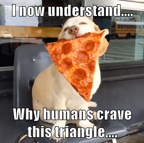 dogs,pizza