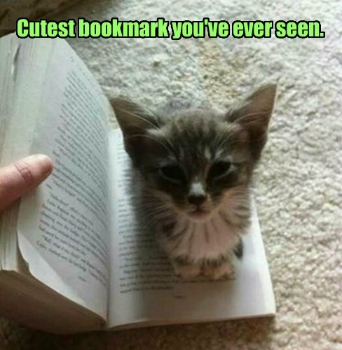 Cutest bookmark you've ever seen.