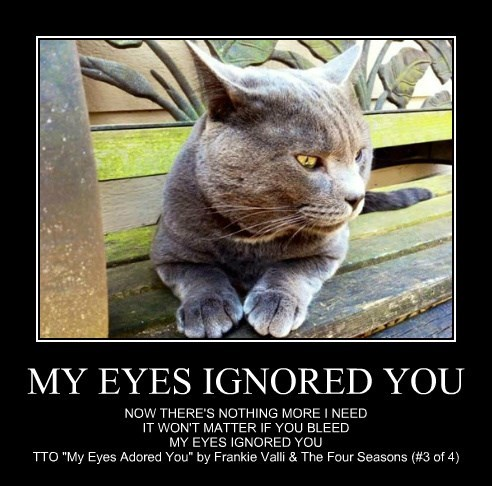 MY EYES IGNORED YOU