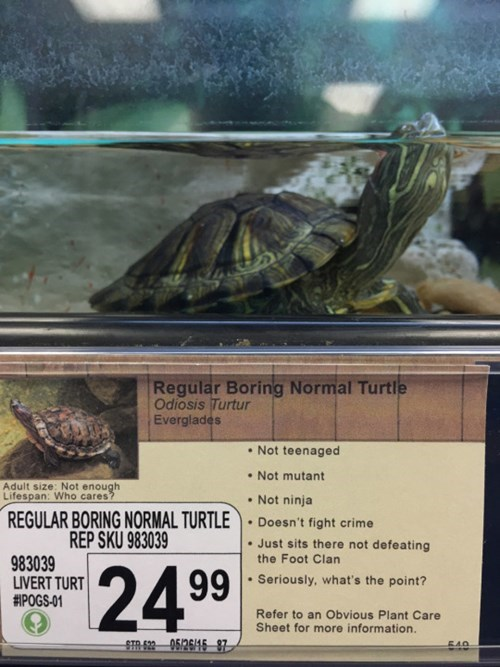 funny-win-pic-pet-store-sign