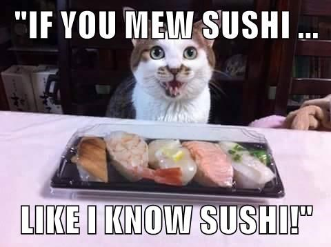 """IF YOU MEW SUSHI ...  LIKE I KNOW SUSHI!"""