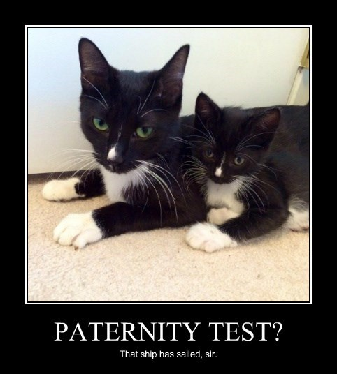 PATERNITY TEST?