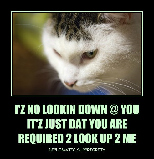 I'Z NO LOOKIN DOWN @ YOU IT'Z JUST DAT YOU ARE REQUIRED 2 LOOK UP 2 ME