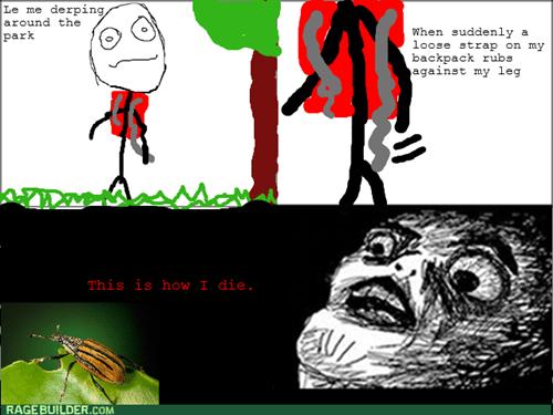 scary,Hiking,bugs