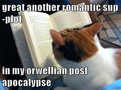 great another romantic sup-plot  in my orwellian post apocalypse