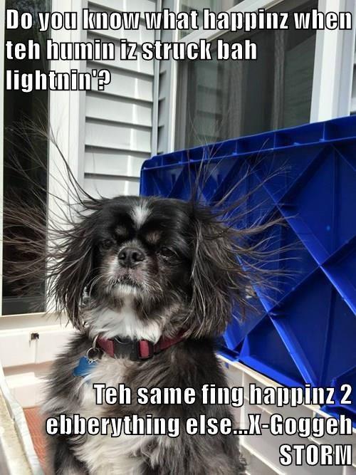 Do you know what happinz when teh humin iz struck bah lightnin'?  Teh same fing happinz 2 ebberything else...X-Goggeh STORM