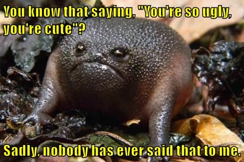 """You know that saying, """"You're so ugly, you're cute""""?  Sadly, nobody has ever said that to me."""