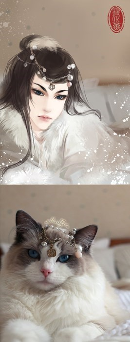 dogs,list,anime,fan art,Cats,animals