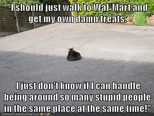 """I should just walk to Wal*Mart and get my own damn treats.   I just don't know if I can handle being around so many stupid people in the same place at the same time!"""