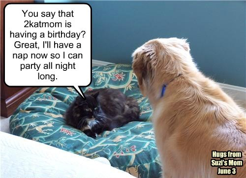 You say that 2katmom is having a birthday? Great, I'll have a nap now so I can party all night long.