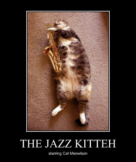 THE JAZZ KITTEH