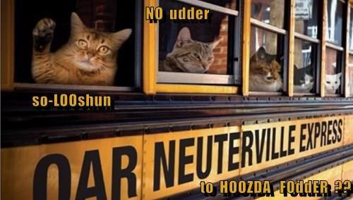 NO  udder           so-LOOshun to  HOOZDA   FOddER  ??