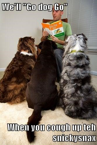 """We'll """"Go dog Go""""  When you cough up teh snickysnax"""