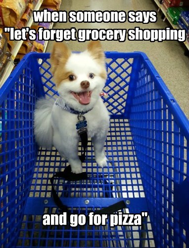 dogs,pizza,shopping