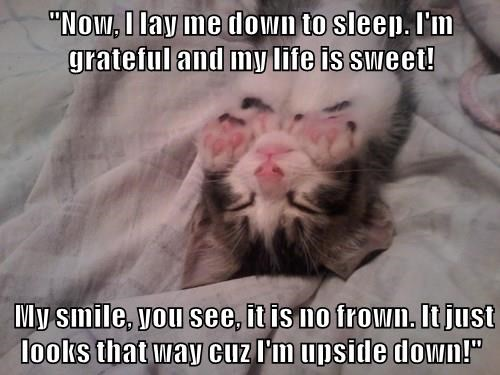 """Now, I lay me down to sleep. I'm grateful and my life is sweet!   My smile, you see, it is no frown. It just looks that way cuz I'm upside down!"""