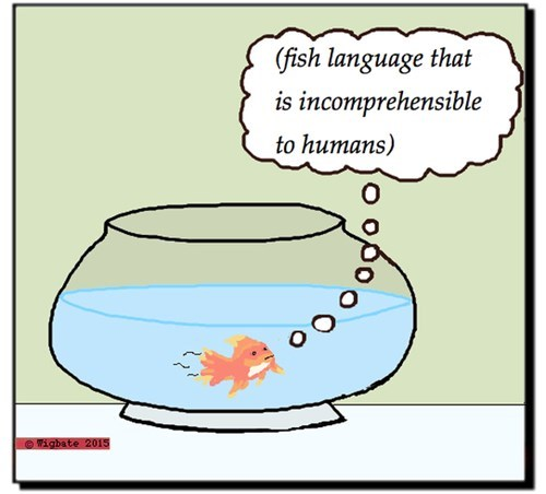 funny-web-comics-only-fish-people-will-get-this-joke