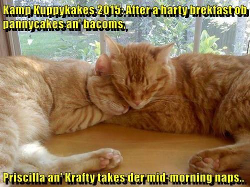 Kamp Kuppykakes 2015: After a harty brekfast ob pannycakes an' bacoms,  Priscilla an' Krafty takes der mid-morning naps..